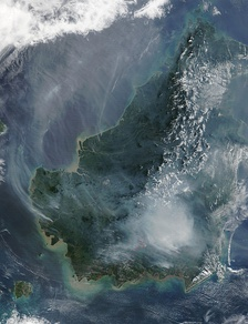 Satellite image of the island of Borneo on 19 August 2002, showing smoke from burning peat swamp forests