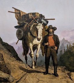A miner with a packhorse during the California Gold Rush