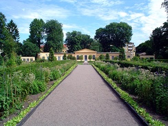 The Linnaean Garden in Uppsala