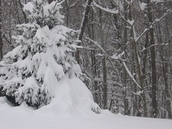 December 18 and 19, 2003. Significant snowstorm in West Virginia