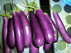 Long purple eggplants