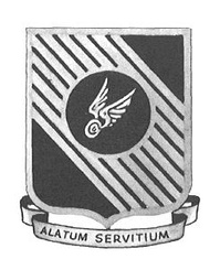 10th Troop Carrier Group Emblem