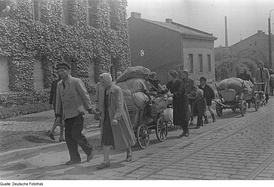 Refugees trail, eastern Germany 1945.