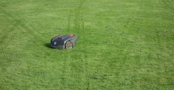A robotic lawn mower with visible track marks in a lawn indicating the random way it cuts the grass.