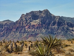 Desert scene at the Red Rock Canyon National Conservation Area in the Las Vegas area