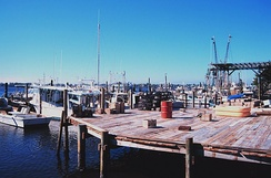 The Central Florida Seafood Industry is shown here with a photograph of shrimp, snapper, grouper, and stone crab fishing boats at Cortez, Florida