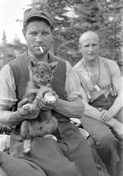 Soviet prisoners of war and a puppy pictured in August 1941 at Lupasalmi (Russian: Лубосалма) in Karelia