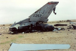 Remains of downed F-16C