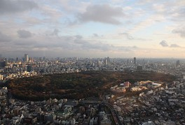 Yoyogi Park is a large urban park in Tokyo.