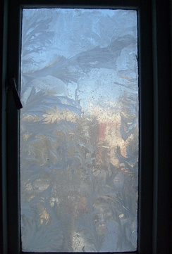 Window with frost patterns