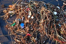 An example of sea pollution which the conference sought to avert.