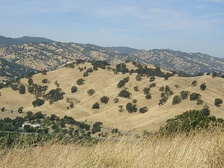 Vacaville Hills during summer