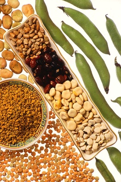 A selection of dried pulses and fresh legumes