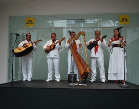 Son Jarocho group Zarahuato performing at the Museo de Arte Popular.