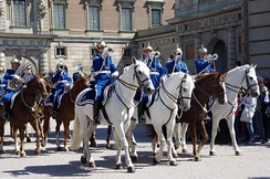 The Life Guards' Dragoon Music Corps performing during the National Day of Sweden in 2012