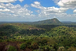 Central Suriname Nature Reserve seen from the Voltzberg