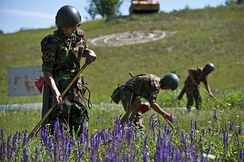 Kyrgyz soldiers conducting mine sweeping exercises.
