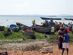 Fishers and their boats on the shore of Lake Victoria