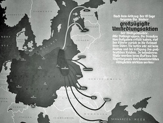 "Origin of German colonisers in annexed Polish territories. Was set in action ""Heim ins Reich"""