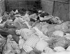 Bodies of 2,000–3,000 prisoners evacuated from Buchenwald in 40 sealed boxcars on 7 April 1945, arriving at Dachau on 28 April