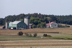 A typical North American grain farm with farmstead in Ontario, Canada