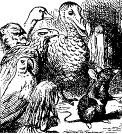 The Eaglet, the Duck, the Dodo, the Lory and others; illustration by John Tenniel