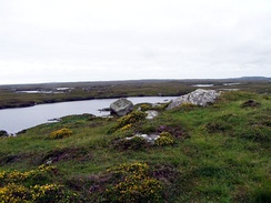 Blanket bog in Connemara, Ireland