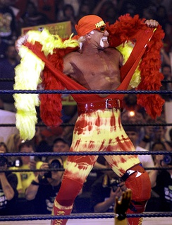 Hulk Hogan became one of wrestling's most famous faces during the 1980s professional wrestling boom