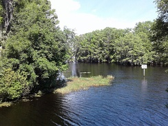 Lake Tsala Apopka, view from bridge on Gobbler Drive, in Floral City, Florida