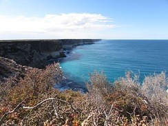 Great Australian Bight 2015