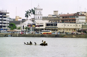 Tuxpan from the river