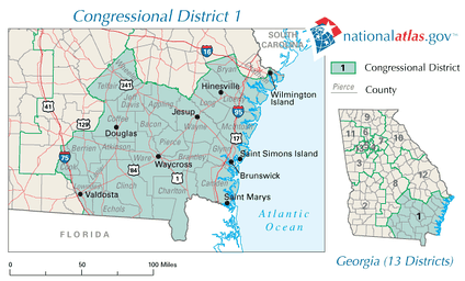 Georgia's 1st congressional district in 2010