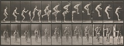 Eadweard Muybridge Boys playing Leapfrog (1883–86, printed 1887) Collotype