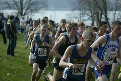 The New York State Federation Championship cross country meet