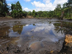 Oil pollution in Lago Agrio, November 2007