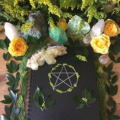 A 'Book of Shadows', sitting on a Wiccan altar, alongside plants and crystals.