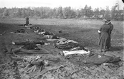 Dead Germans in Nemmersdorf, East Prussia. Soviet atrocities, exaggerated and spread by Nazi propaganda, fueled the spontaneous flight of the German population.