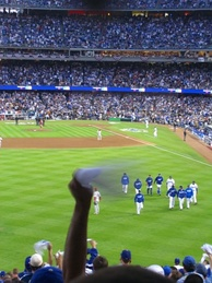 A fan waves a rally towel during the 2008 National League Championship Series (NLCS).