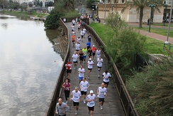 The Tel Aviv Marathon going through Hayarkon Park