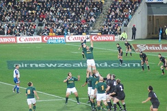 Locks jumping for a ball at a line-out.