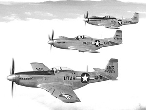 144th Fighter Group - 3 F-51 flight.jpg