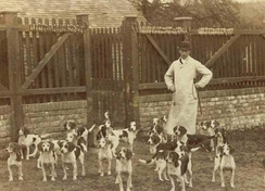 The Caynsham Foot Beagles (c. 1885)