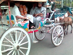 Horse-drawn carriages are uncommon but some remain in use in some parts of Dhaka