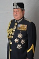 Sultan Ibrahim Ismail of mixed Chinese, Danish, English and Malay descent is the incumbent Sultan of Johor.