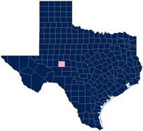 In Texas, only Irion county (pink) has refused to confirm whether they would license same-sex couples.[103]
