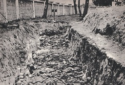 Mass grave of USSR POWs, killed by Germans. Some 3.3 million Soviet POWs died in Nazi custody.