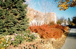 Drew Residence Hall in the autumn