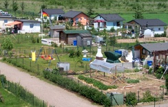 Allotments in Germany