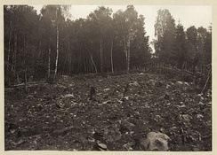 Photo of deforested land