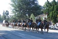 First Cavalry Division Equestrian Unit, US Army, Ft. Hood TX, at the 2007 Rose Parade